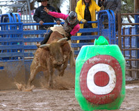 Sells Rodeo SATURDAY PERF 1.31.2015