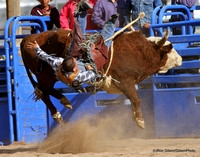 2014 All Indian Rodeo - Sells, AZ - 2.1.2014
